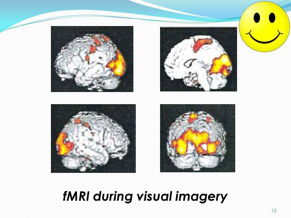 fMRI during visual imagery