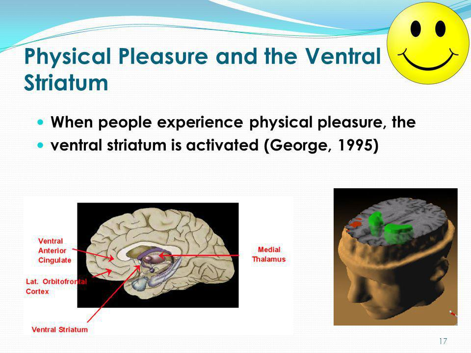 Physical Pleasure and the Ventral Striatum