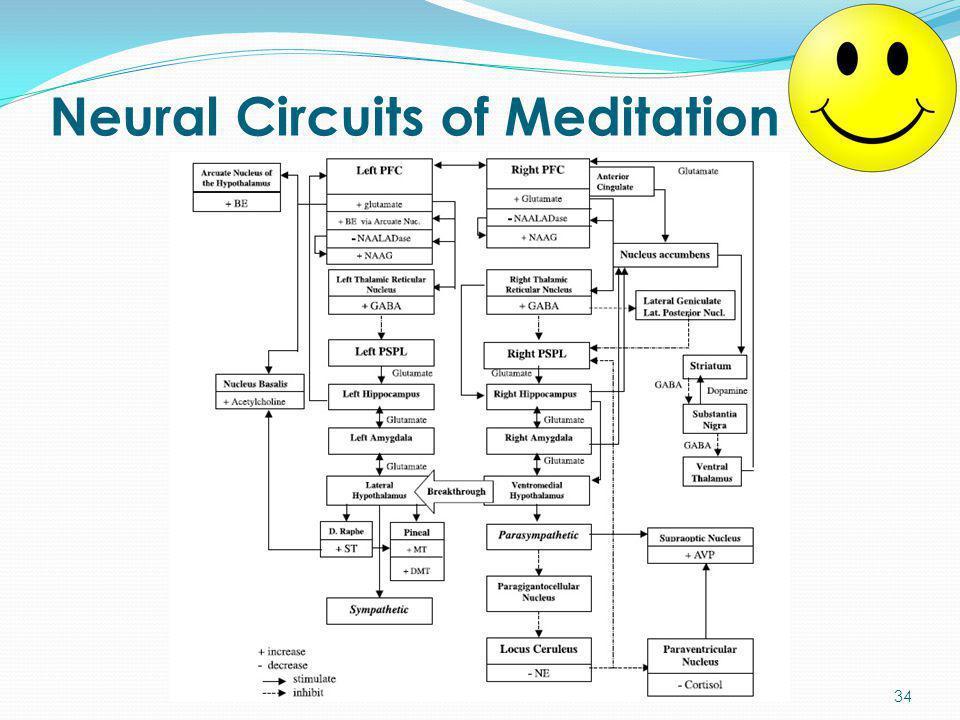Neural Circuits of Meditation