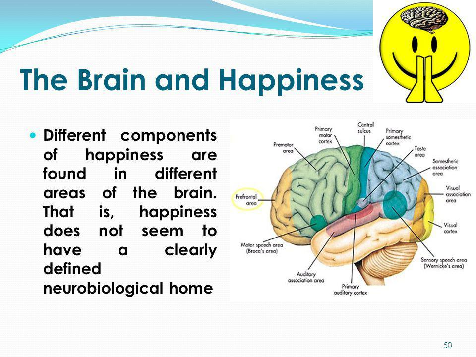 The Brain and Happiness