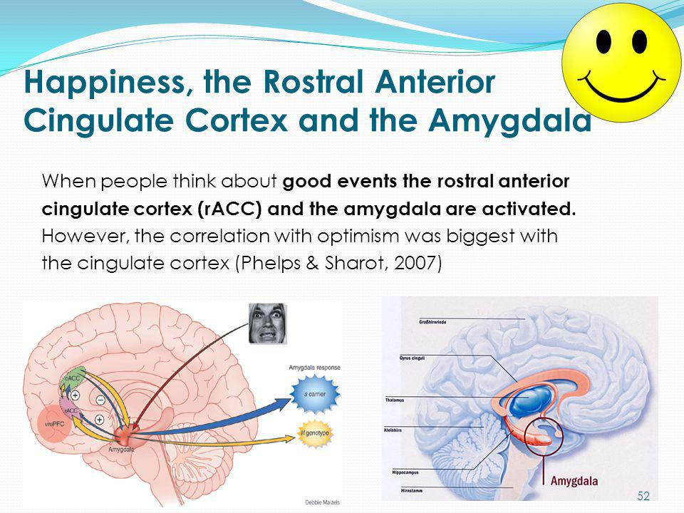 Happiness, the Rostral Anterior Cingulate Cortex and the Amygdala