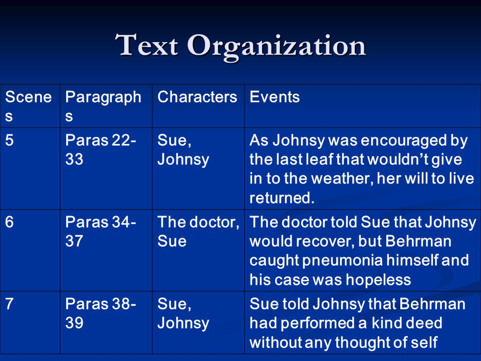 Text Organization Scenes Paragraphs Characters Events 5 Paras 22-33