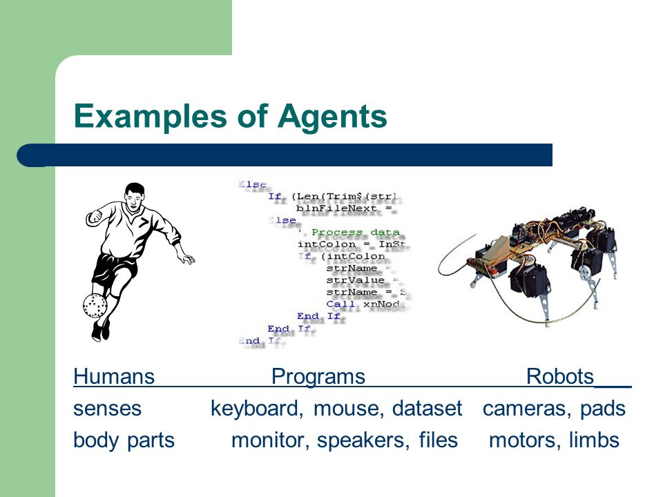 Examples of Agents Humans Programs Robots___