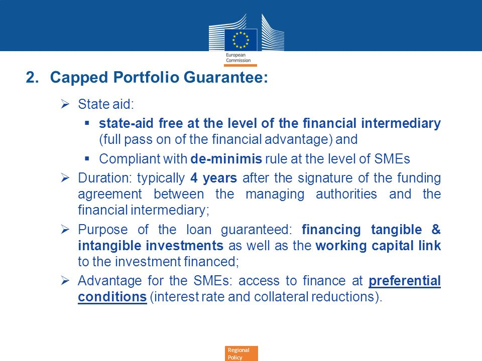 Capped Portfolio Guarantee: