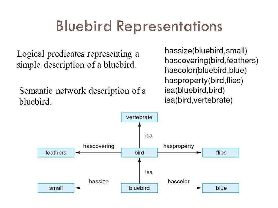 Bluebird Representations