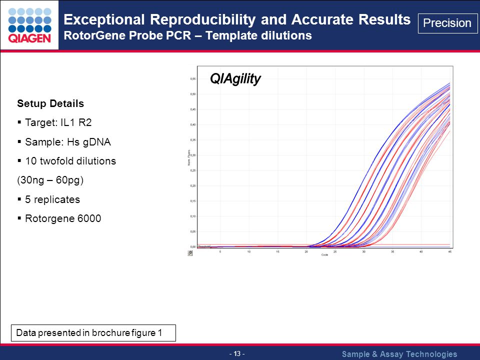 Exceptional Reproducibility and Accurate Results RotorGene Probe PCR – Template dilutions