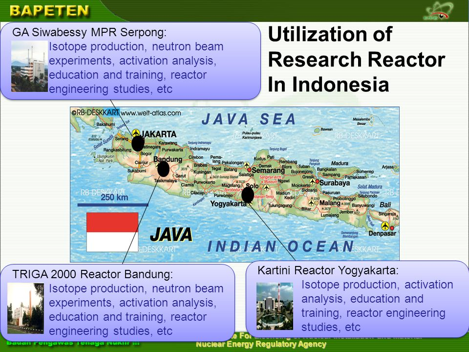 Utilization of Research Reactor In Indonesia