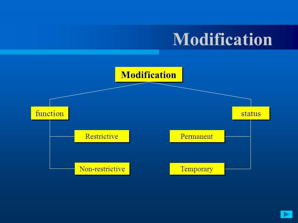 Modification Modification function status Restrictive Permanent