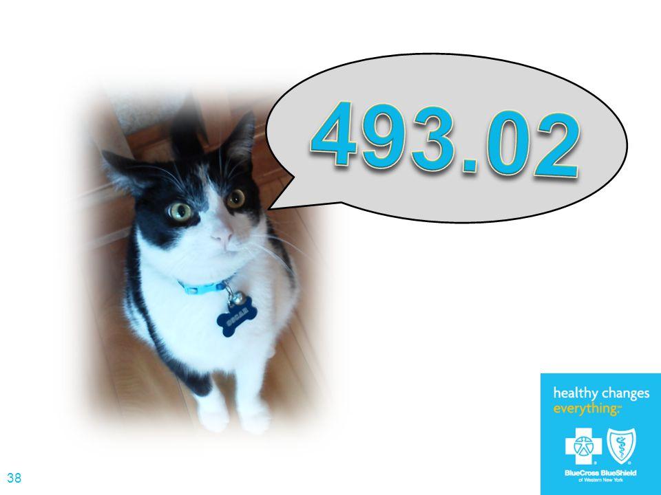 493.02 MEOW!!!
