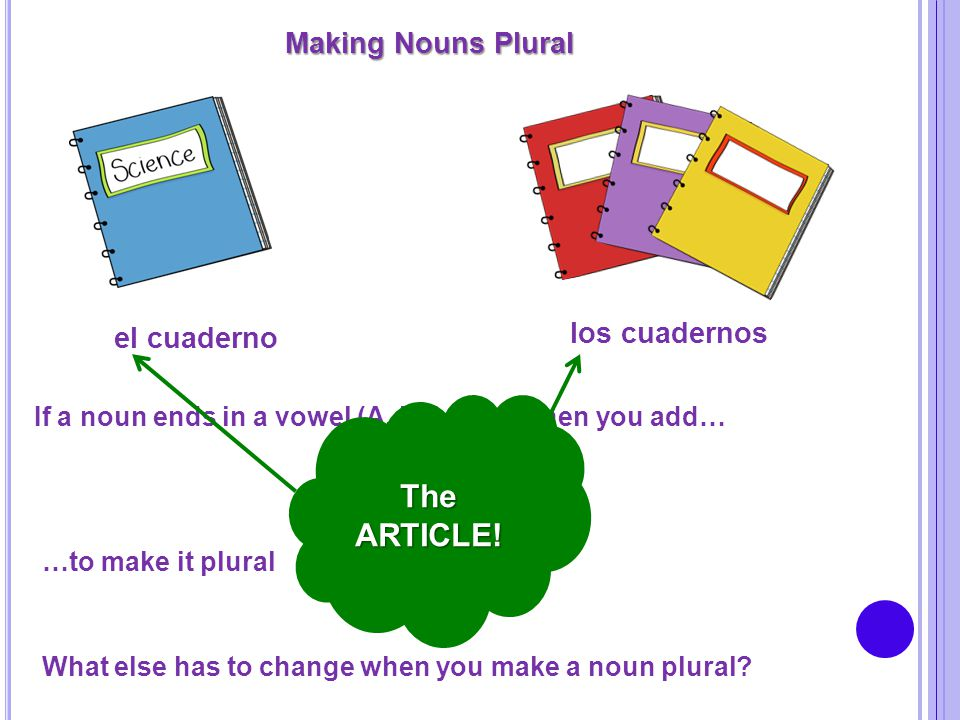 -S The ARTICLE! Making Nouns Plural los cuadernos el cuaderno