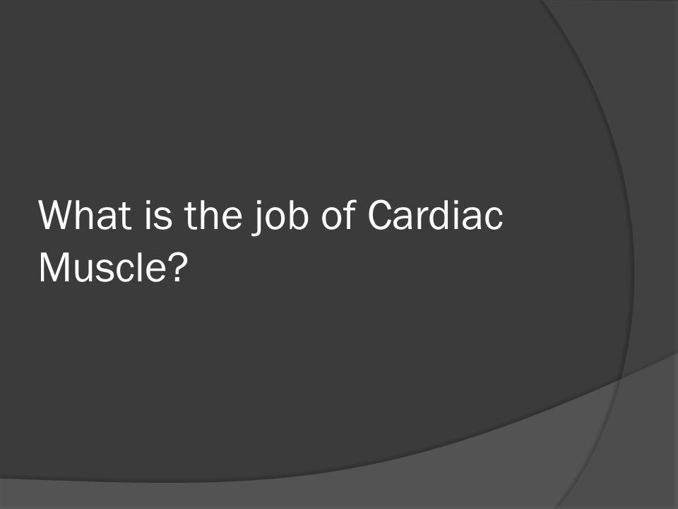 What is the job of Cardiac Muscle