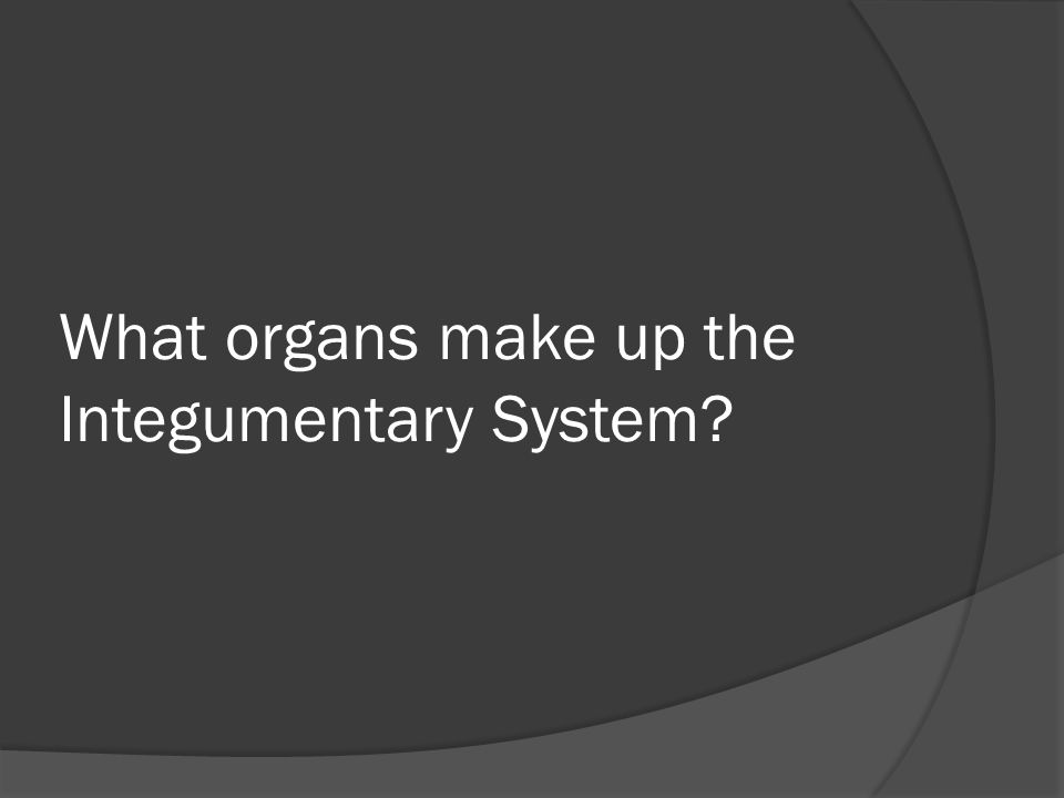 What organs make up the Integumentary System
