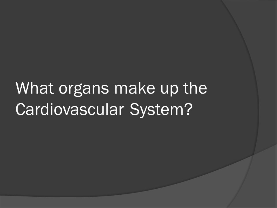 What organs make up the Cardiovascular System