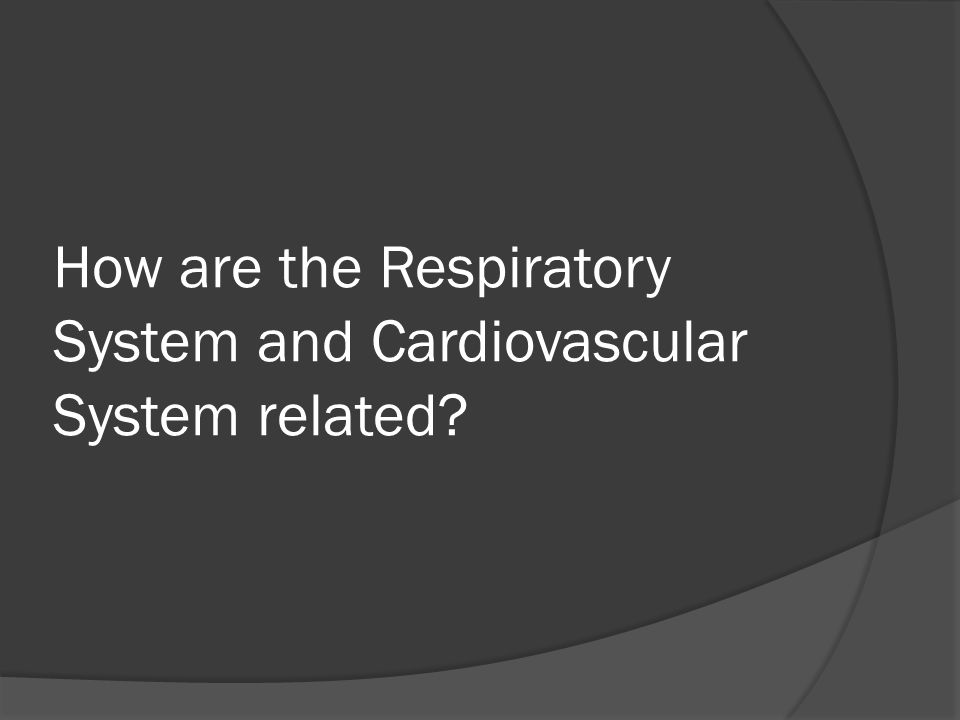 How are the Respiratory System and Cardiovascular System related