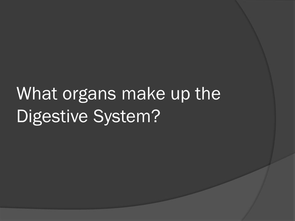 What organs make up the Digestive System