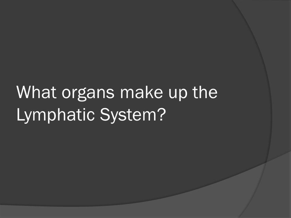 What organs make up the Lymphatic System