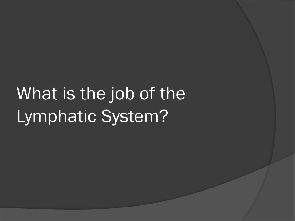 What is the job of the Lymphatic System