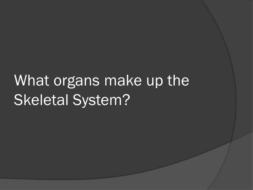 What organs make up the Skeletal System
