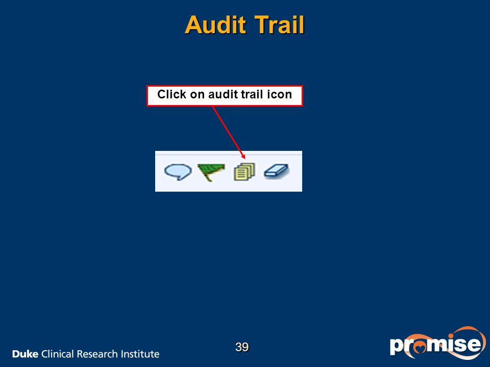 Click on audit trail icon