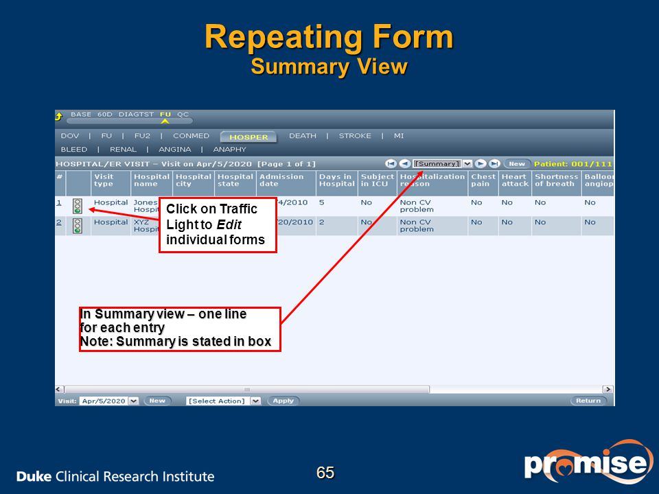 Repeating Form Summary View