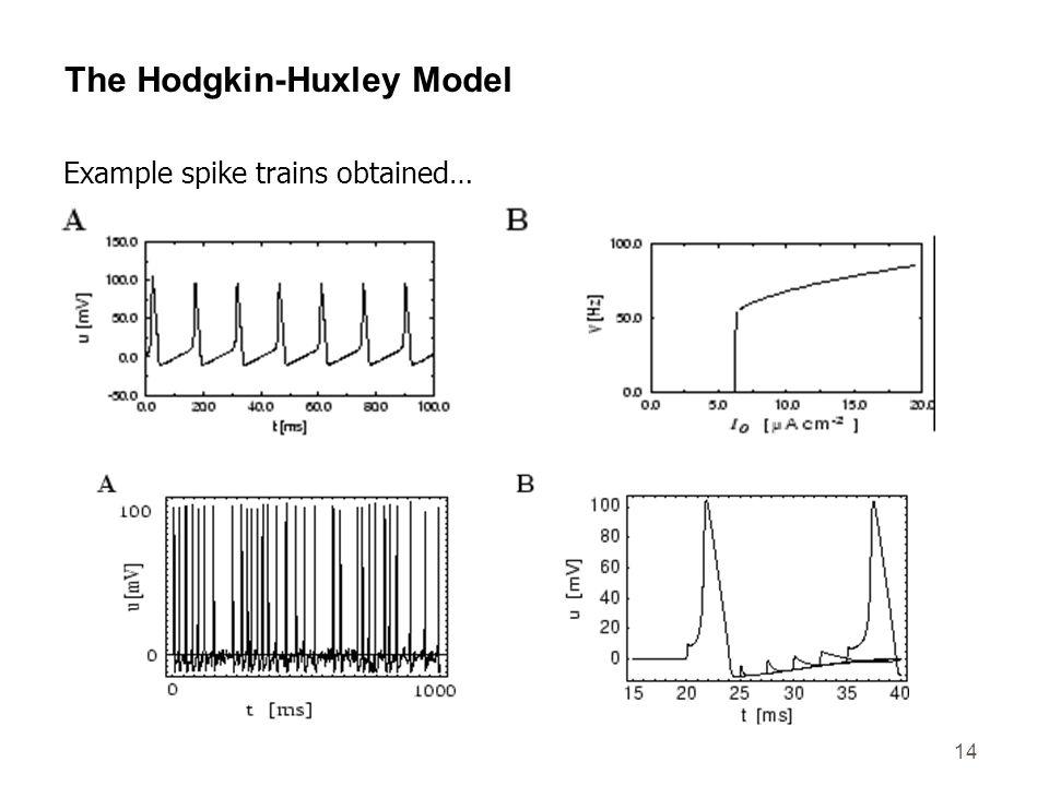 The Hodgkin-Huxley Model