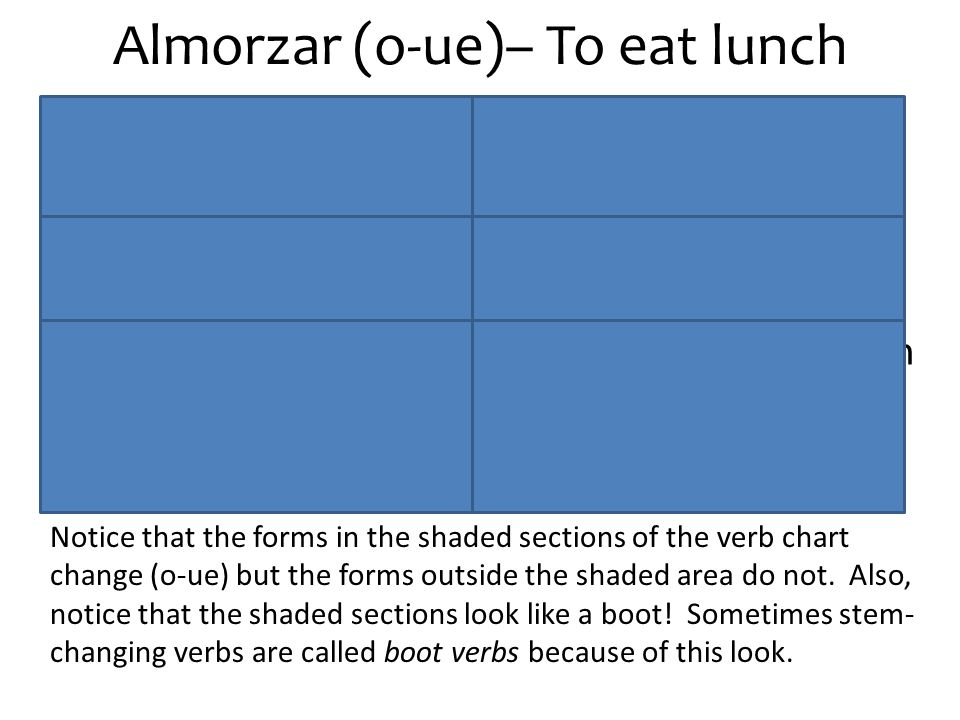 Almorzar (o-ue)– To eat lunch