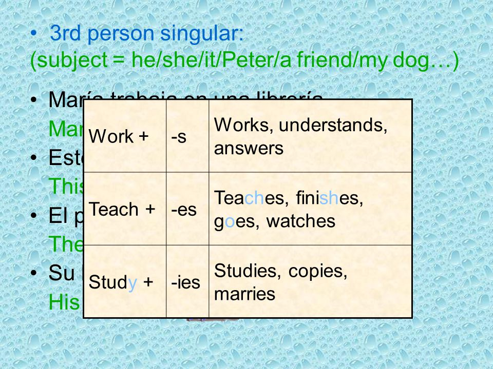 3rd person singular: (subject = he/she/it/Peter/a friend/my dog…)