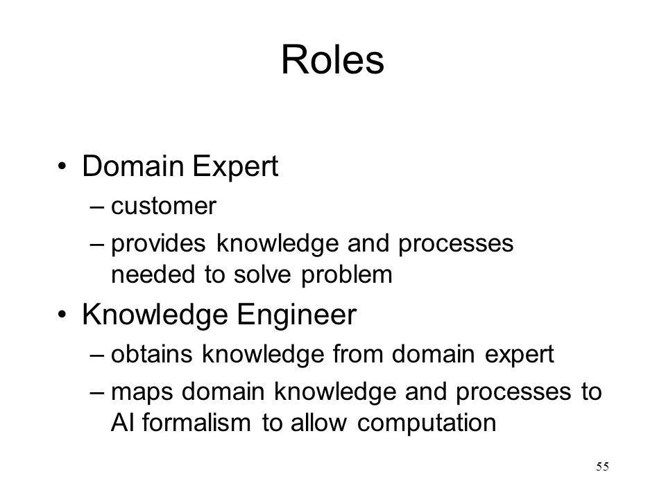 Roles Domain Expert Knowledge Engineer customer