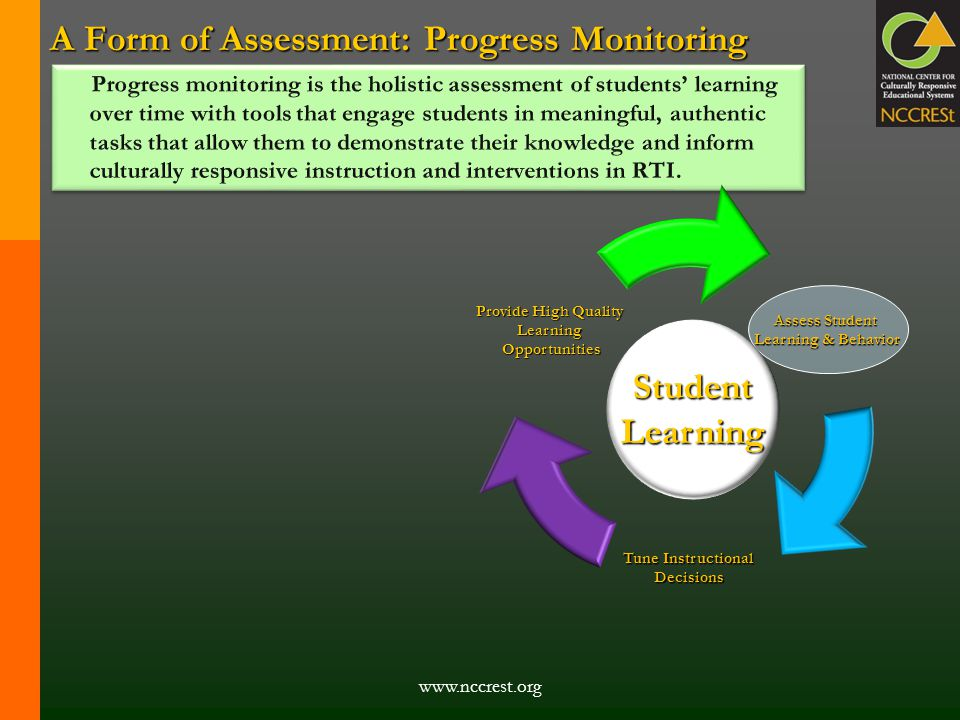 A Form of Assessment: Progress Monitoring