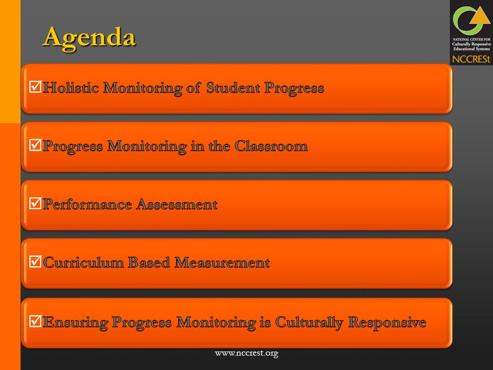 Agenda Holistic Monitoring of Student Progress