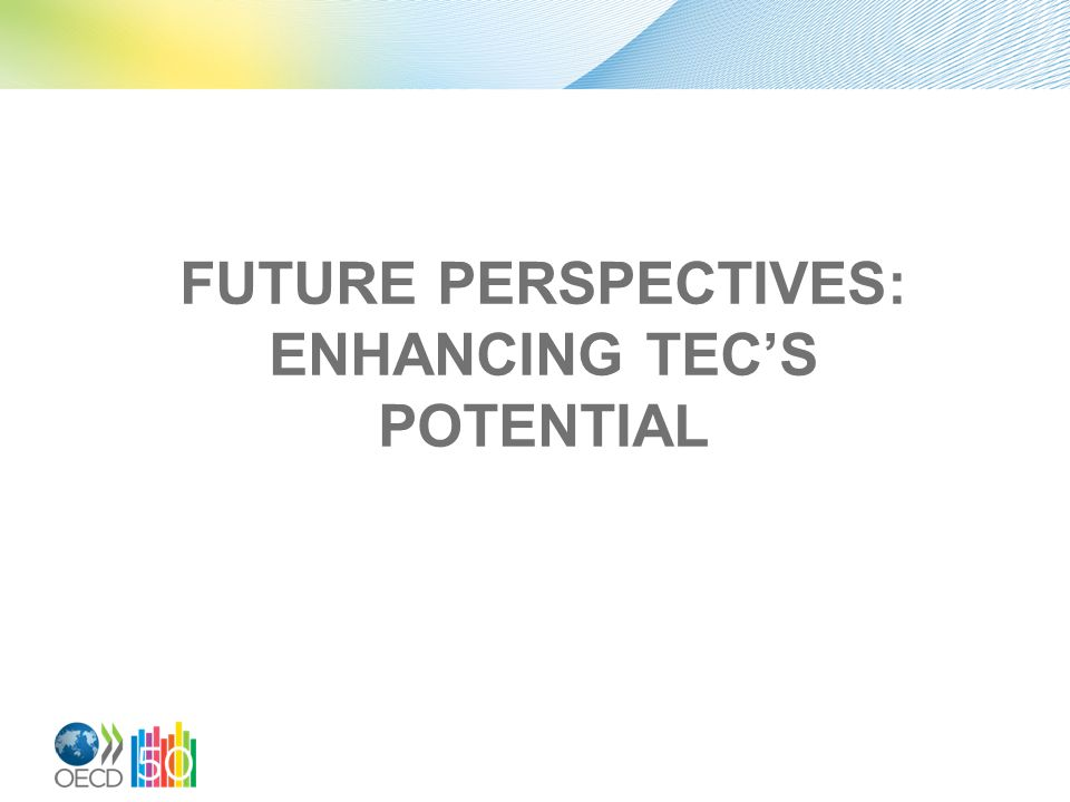 FUTURE PERSPECTIVES: ENHANCING TEC'S POTENTIAL