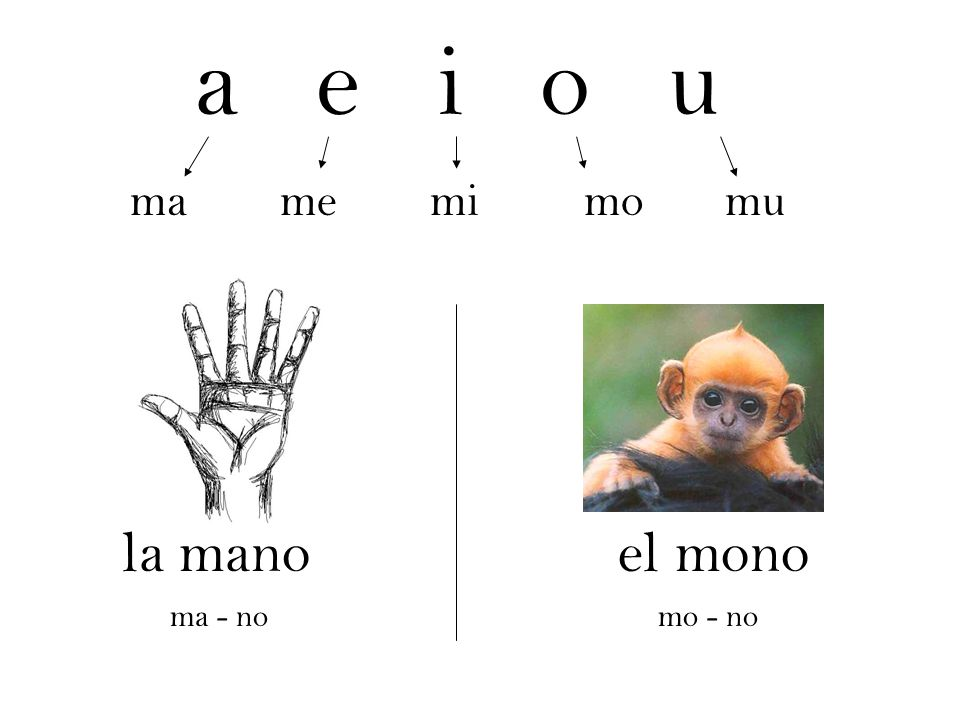 a e i o u ma me mi mo mu. la mano el mono.