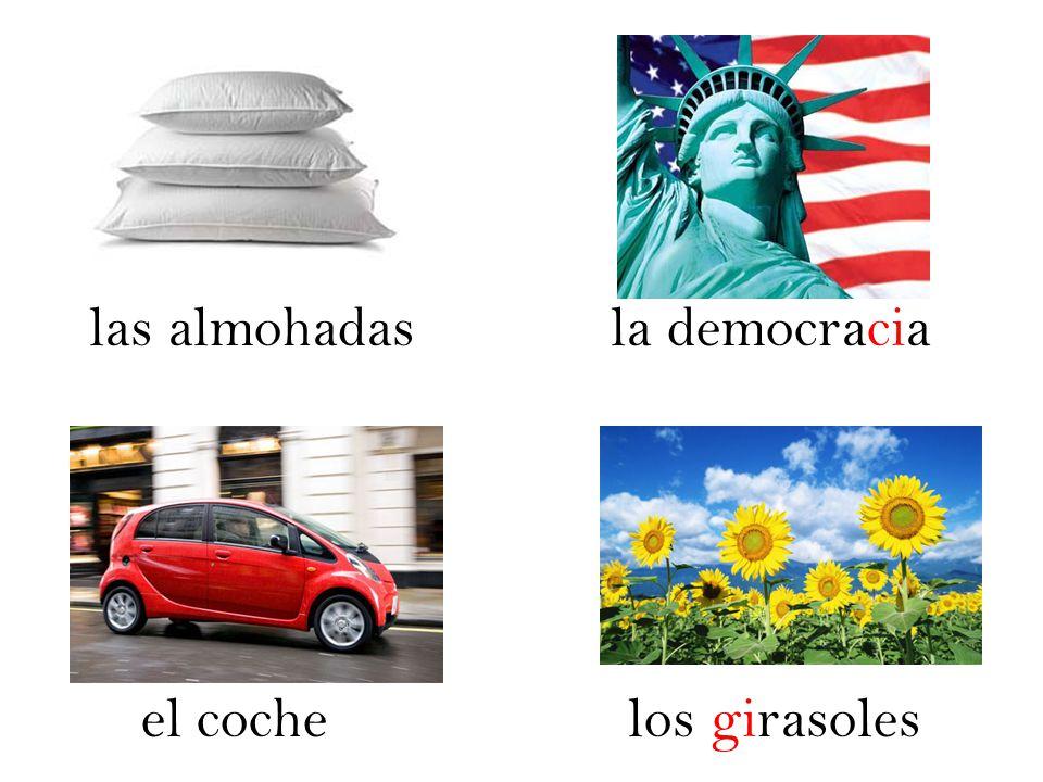 las almohadas la democracia el coche los girasoles