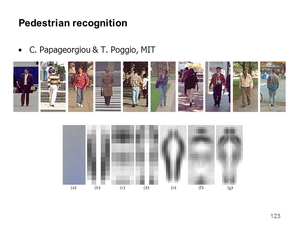 Pedestrian recognition