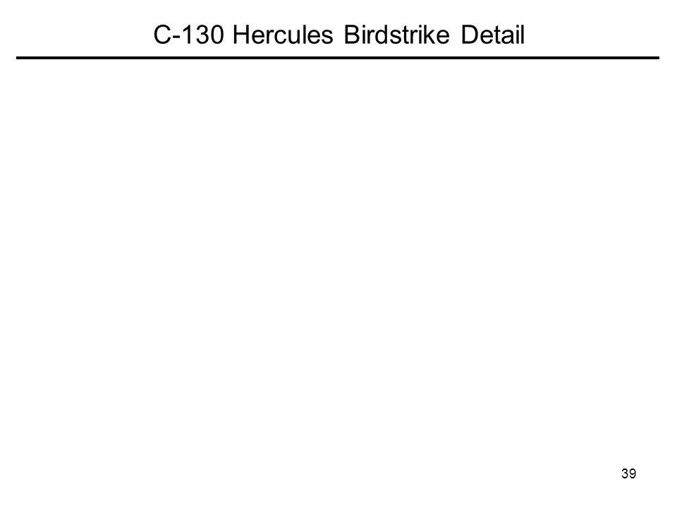 C-130 Hercules Birdstrike Detail
