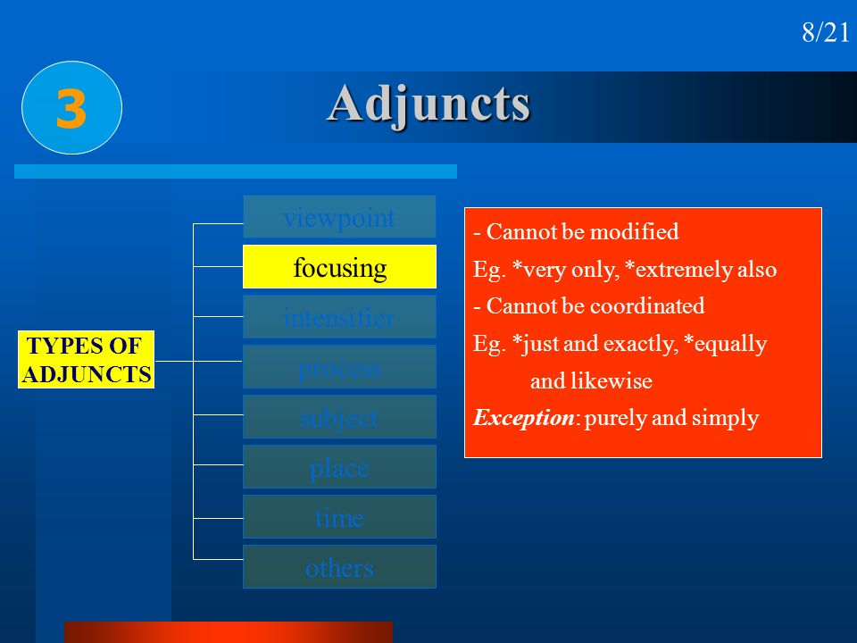 Adjuncts 3 8/21 viewpoint focusing intensifier process subject place