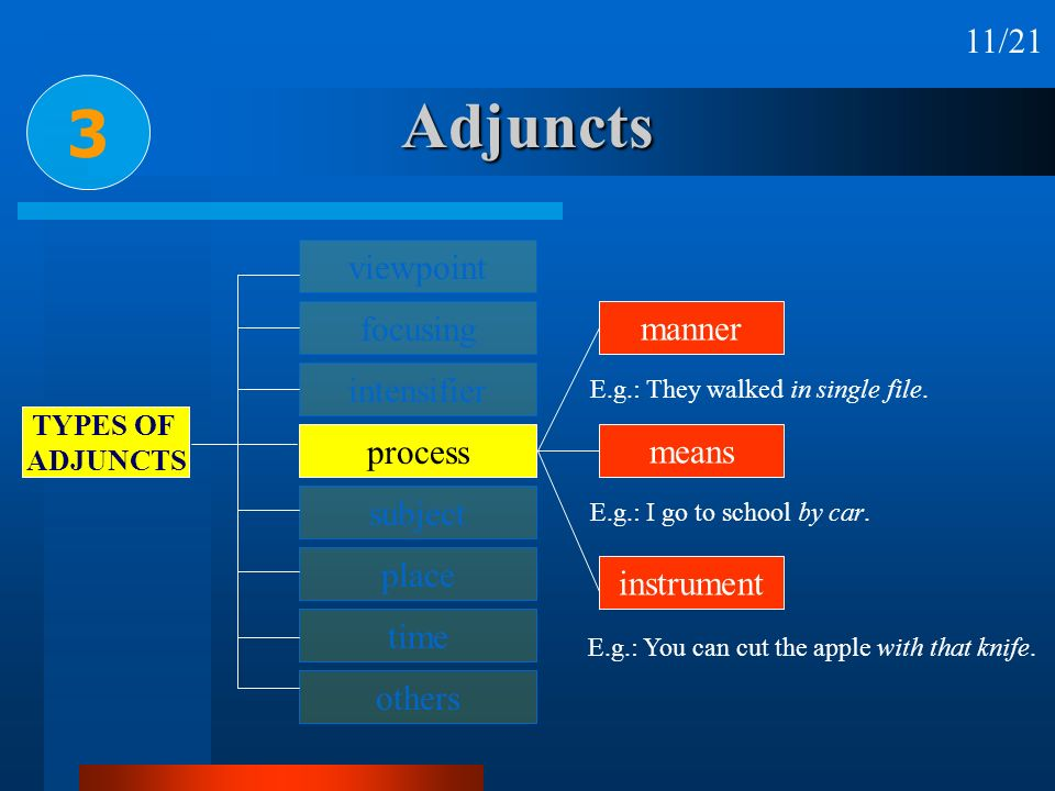 Adjuncts 3 11/21 viewpoint focusing manner intensifier process means