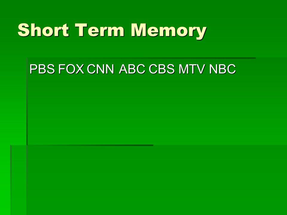 Short Term Memory PBS FOX CNN ABC CBS MTV NBC