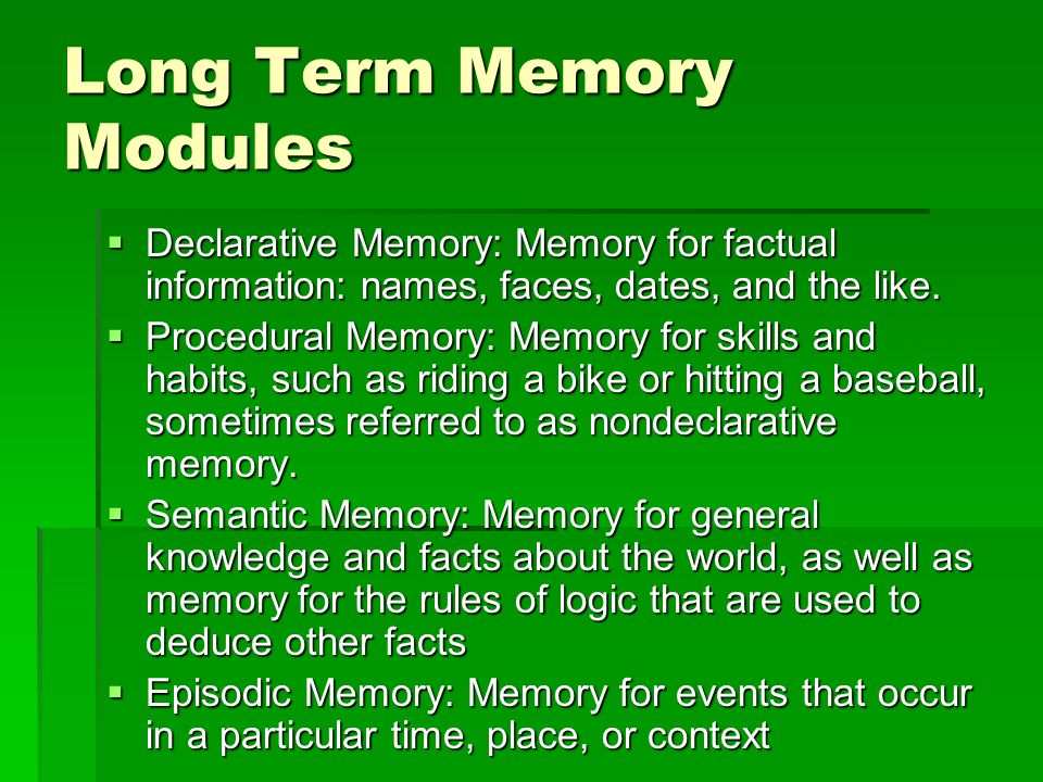 Long Term Memory Modules
