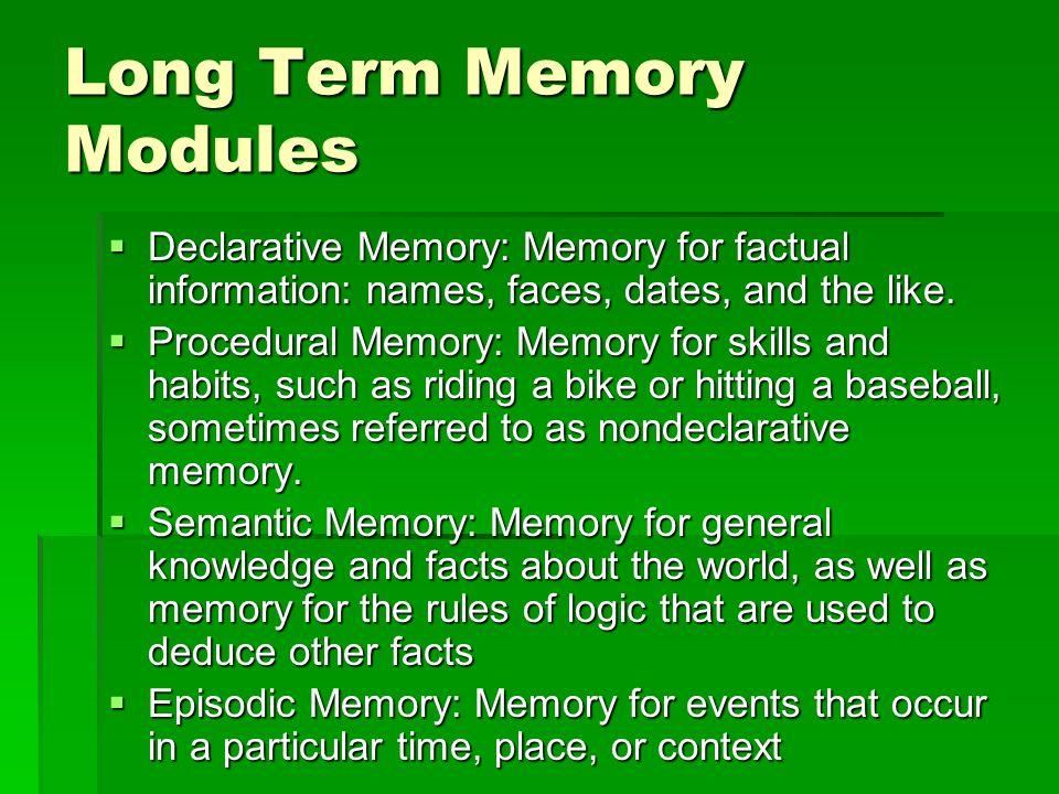 Long Term Memory Modules