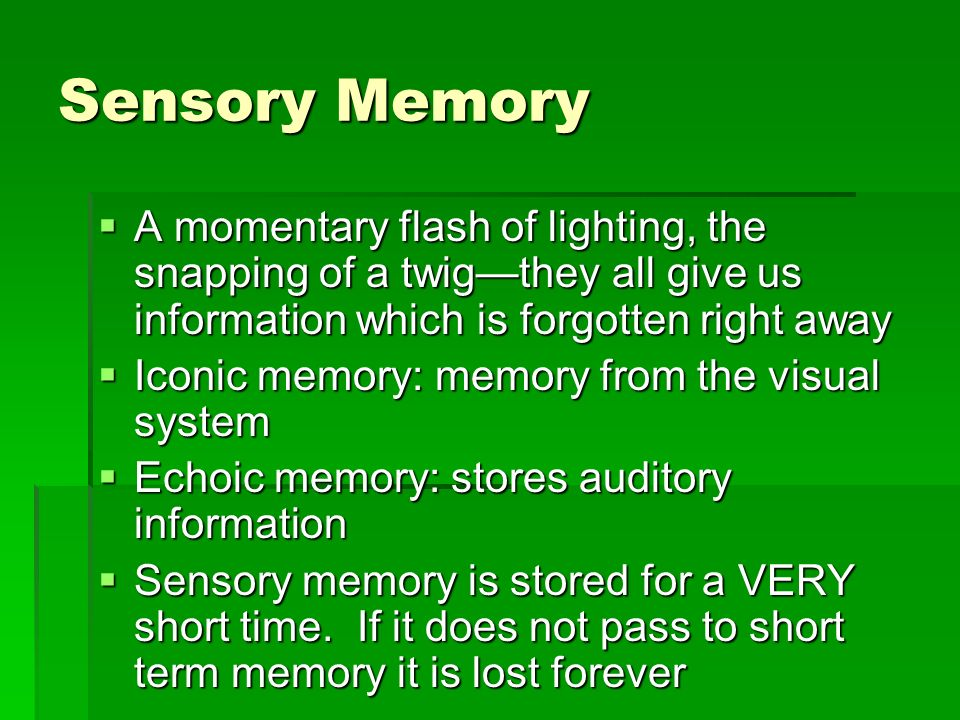 Sensory Memory A momentary flash of lighting, the snapping of a twig—they all give us information which is forgotten right away.