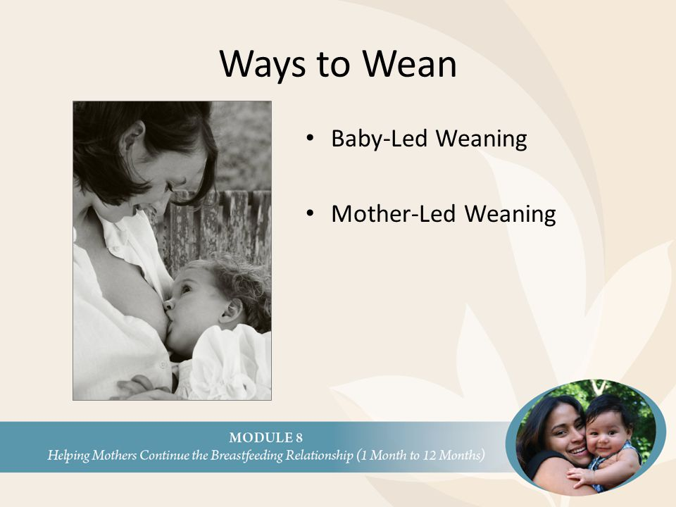 Ways to Wean Baby-Led Weaning Mother-Led Weaning