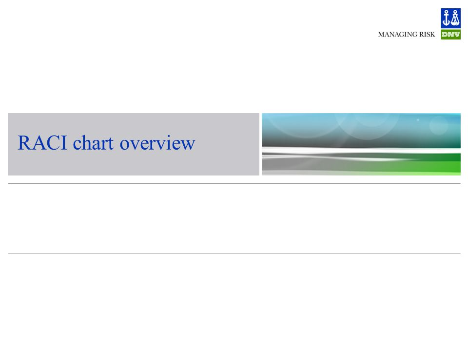 RACI chart overview