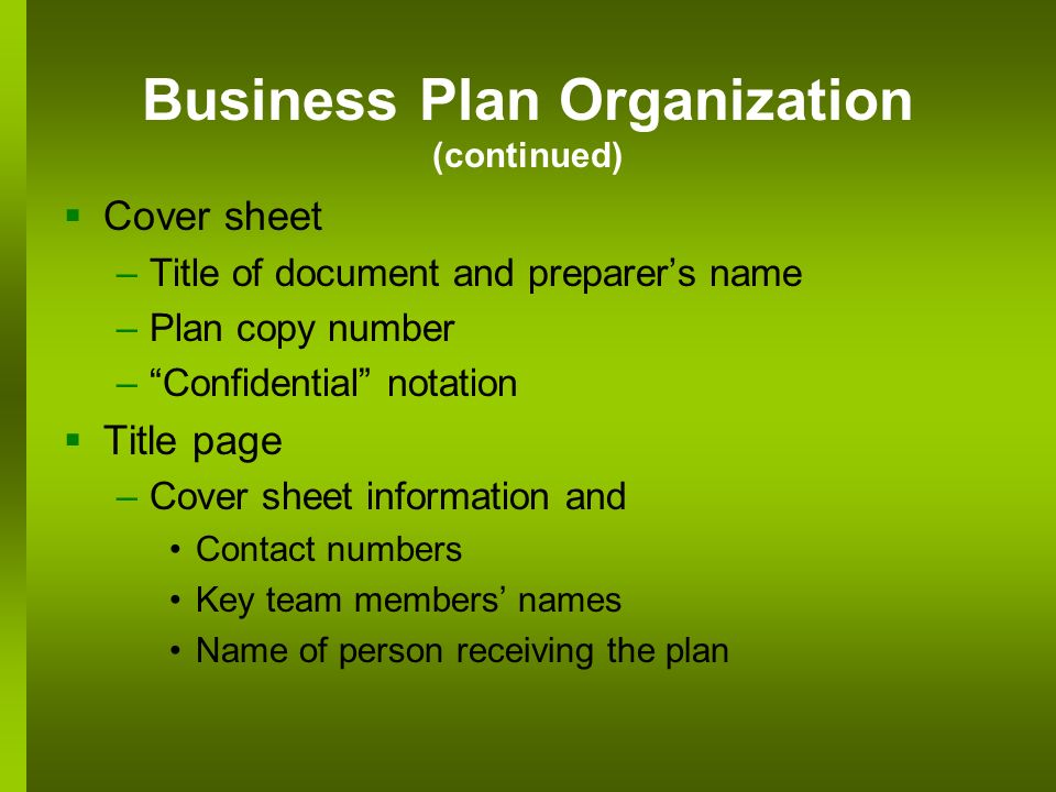 one person business plan