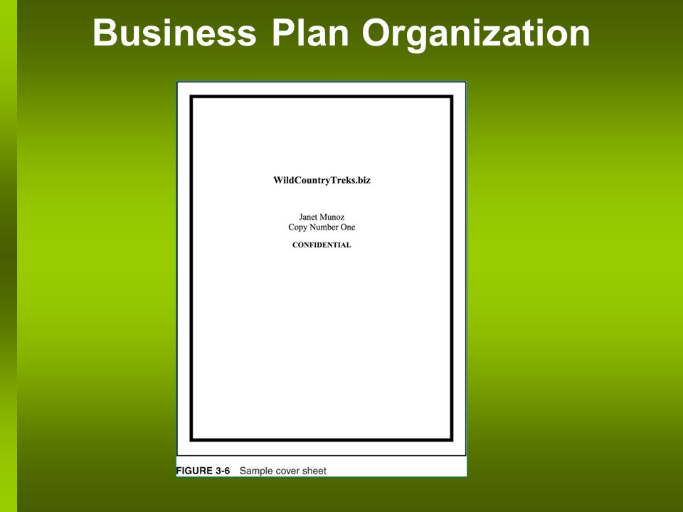 Business Plan Organization