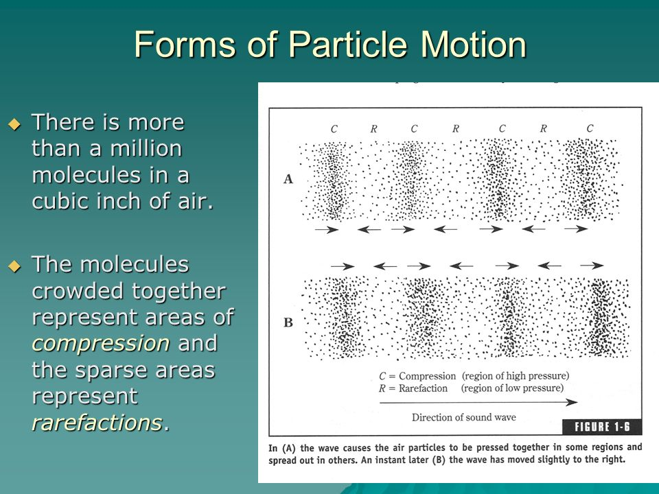 Forms of Particle Motion
