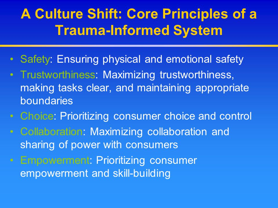 A Culture Shift: Core Principles of a Trauma-Informed System