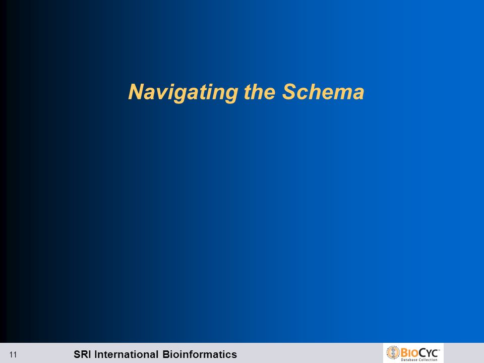 Navigating the Schema