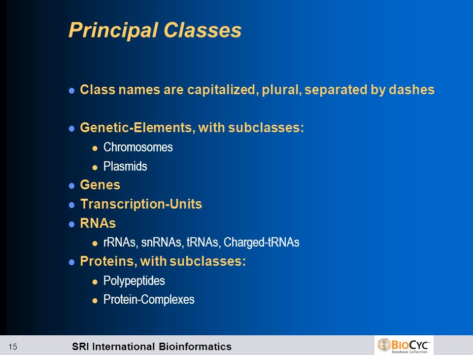 Principal Classes Class names are capitalized, plural, separated by dashes. Genetic-Elements, with subclasses: