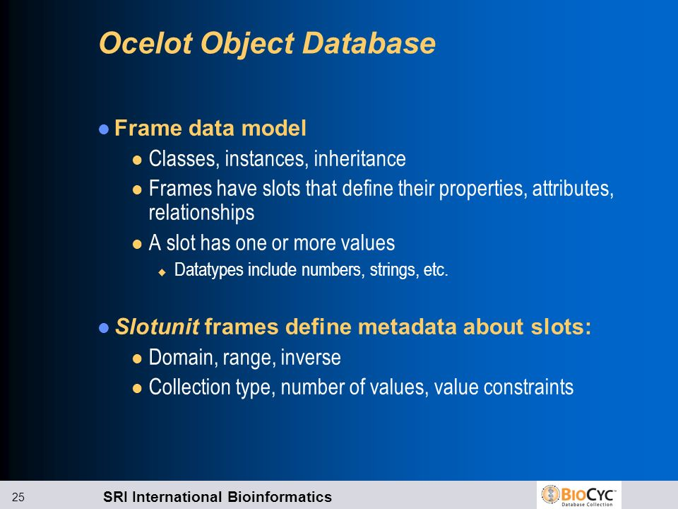 Ocelot Object Database